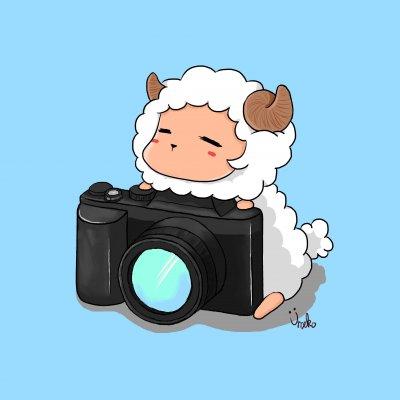 少羊羊攝影師