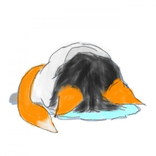 委屈的狐狸墨