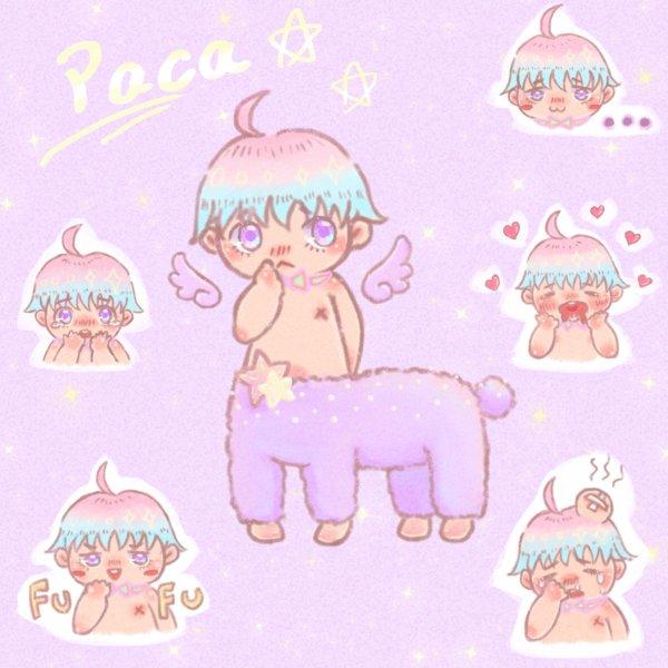 Little PACA