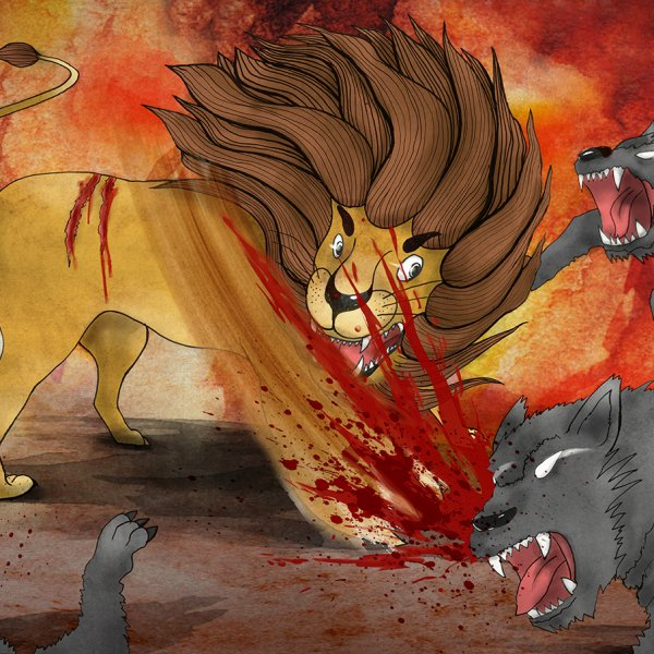 獅子戰鬥中!