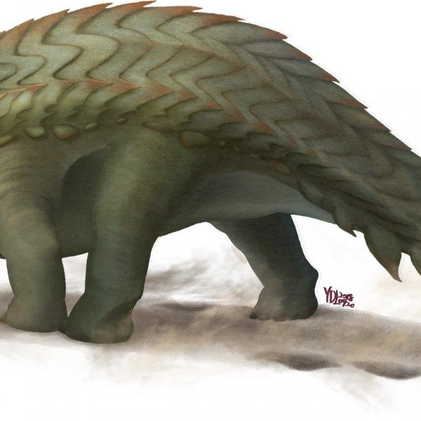 寬嘴含火龍 Ignivorosaurus magnirostris